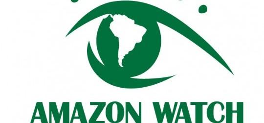 The Amazon Watch